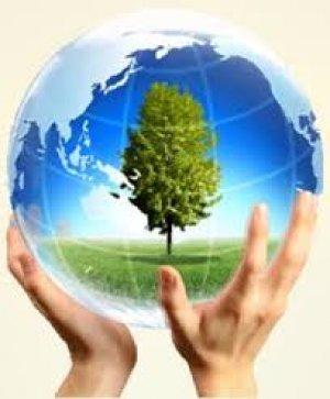 Ô nhiễm môi trường - Lời cảnh báo chưa muộn