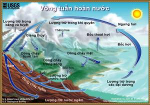 Quy trình tuần hoàn của nước trên Trái Đất